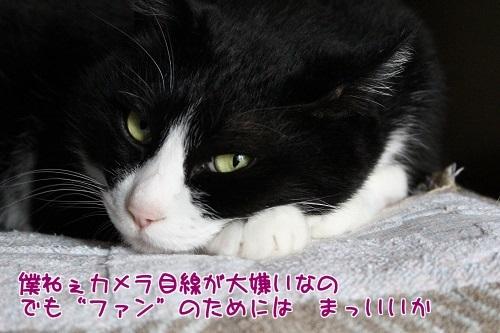 IMG_0171編集②.jpg