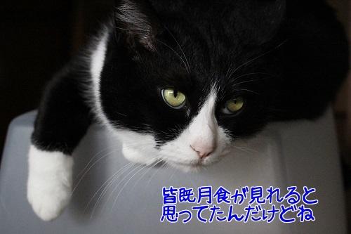IMG_0321編集②.jpg