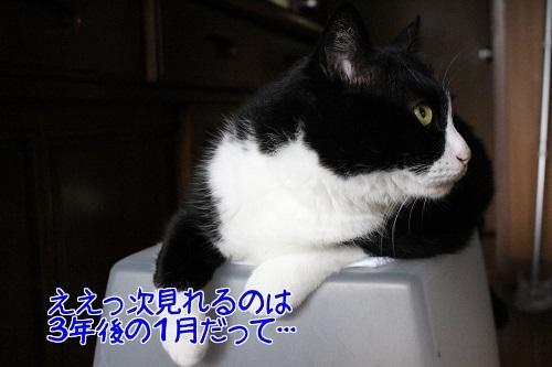 IMG_0325編集②.jpg