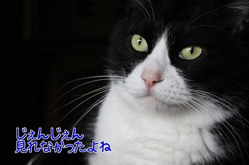 IMG_0329編集②.jpg