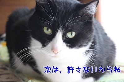 IMG_0413編集②.jpg