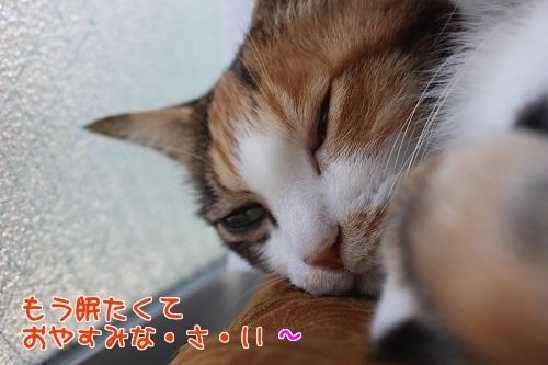 IMG_0475編集②.jpg