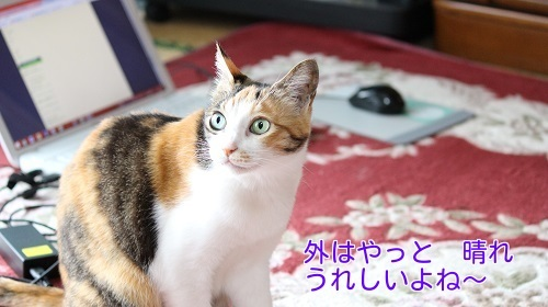IMG_0766編集②.jpg