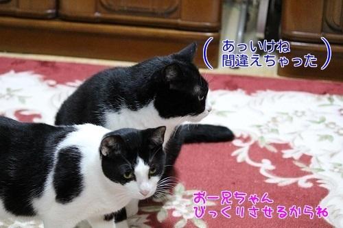 IMG_0878編集②.jpg
