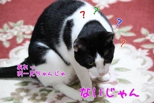 IMG_0882編集②.jpg