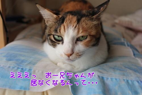 IMG_1114編集②.jpg