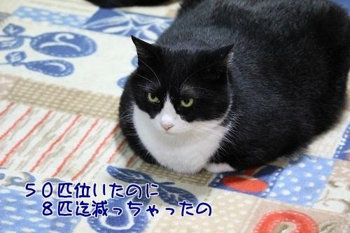 IMG_2635編集②.jpg