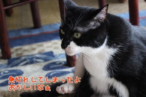 IMG_2926編集②.jpg