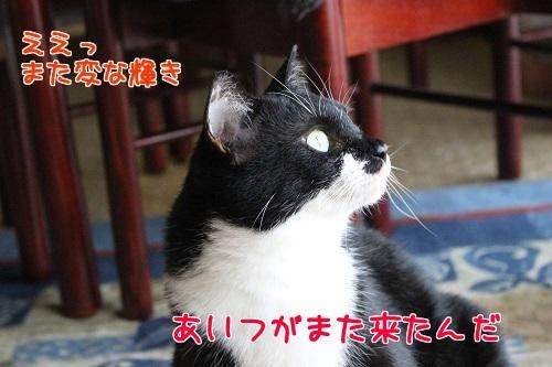 IMG_2937編集②.jpg
