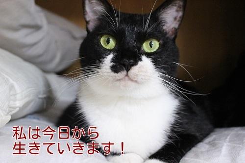 IMG_4079編集②.jpg