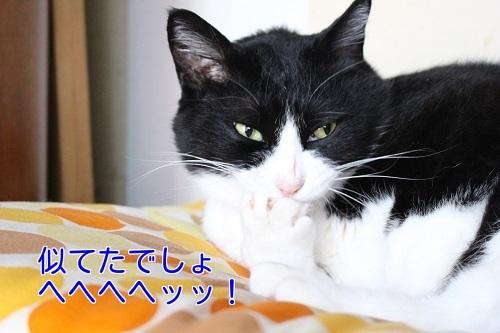 IMG_4268編集②.jpg