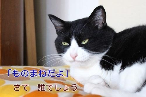IMG_4283編集②.jpg