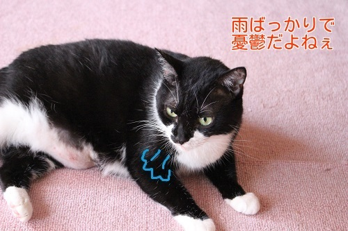 IMG_4424編集②.jpg