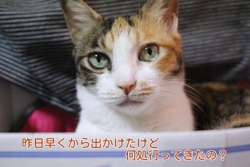 IMG_4560編集②.jpg