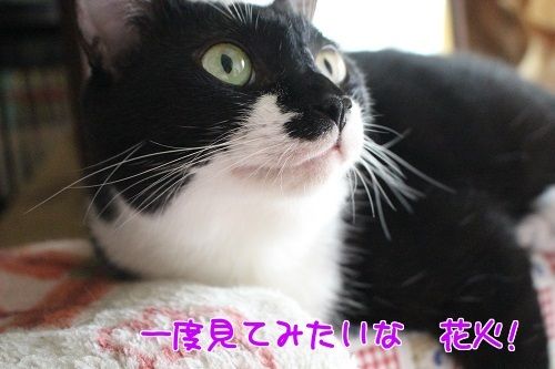 IMG_4642編集②.jpg