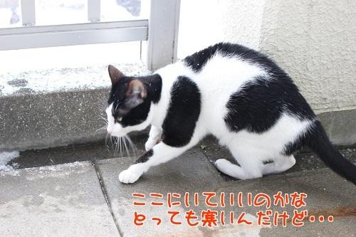IMG_4907編集②.jpg