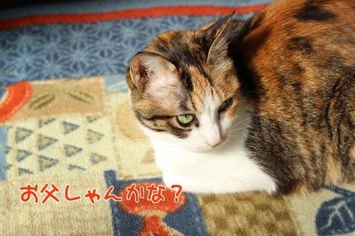IMG_5063編集②.jpg