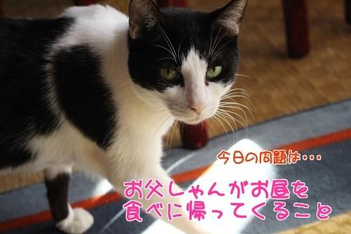 IMG_5083編集②.jpg