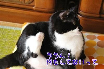 IMG_5245編集②.jpg
