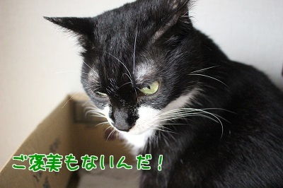 IMG_5727編集②.jpg