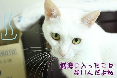 IMG_6054編集②.jpg