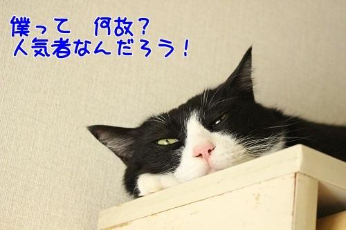 IMG_6057編集② - 1.jpg