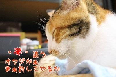IMG_6075編集②.jpg