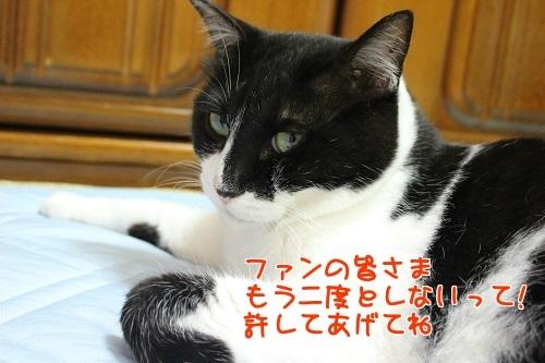 IMG_6100編集②.jpg