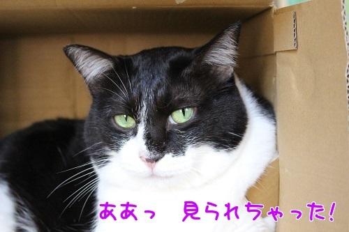 IMG_6909編集②.jpg