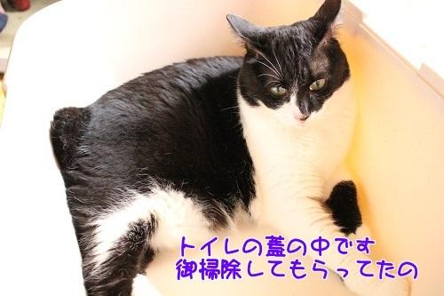 IMG_7090編集②.jpg