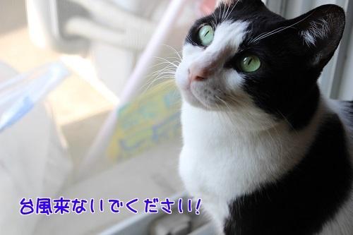 IMG_7470編集②.jpg