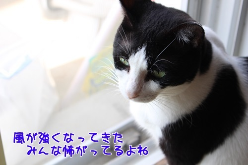 IMG_7473編集②.jpg