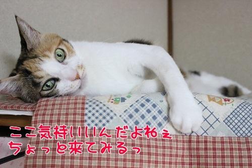 IMG_8143編集②.jpg