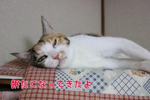 IMG_8149編集②.jpg