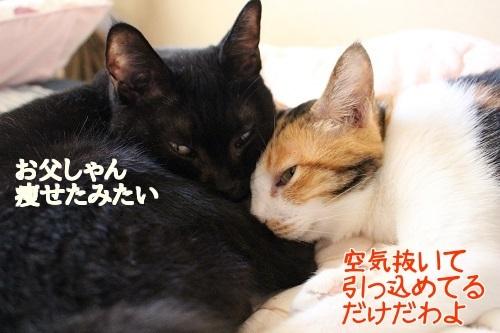 IMG_8524編集②.jpg