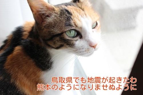 IMG_8555編集②.jpg