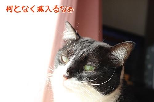 IMG_9015編集②.jpg