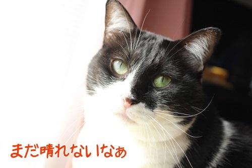 IMG_9021編集②.jpg