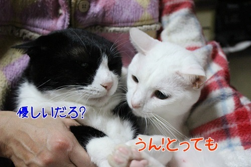 IMG_9588編集②.jpg