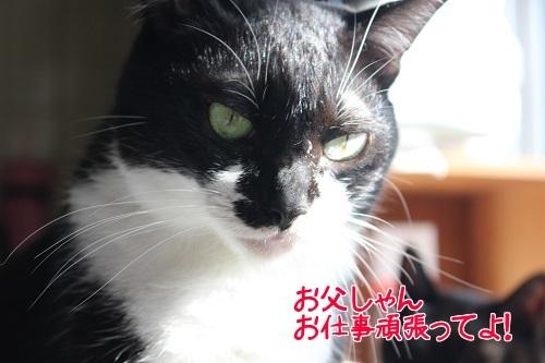 IMG_9809編集②.jpg