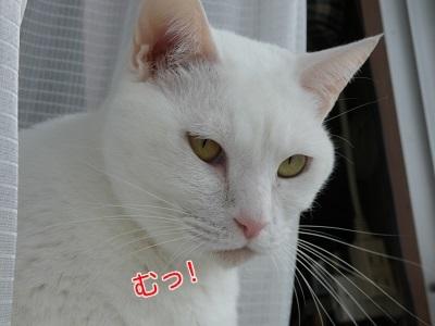P1040410編集②.jpg