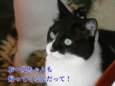 P1040964編集②.jpg