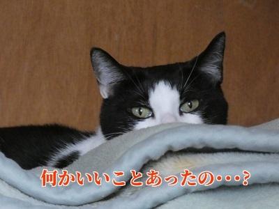 P1050517編集②.jpg