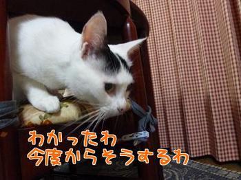 P1170370編集②.jpg