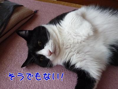 P1190529編集②.jpg