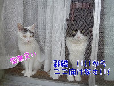 P1200635編集②.jpg