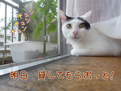 P1210302編集②.jpg