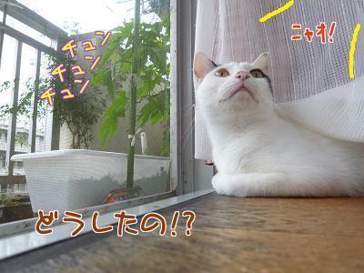 P1210309編集②.jpg