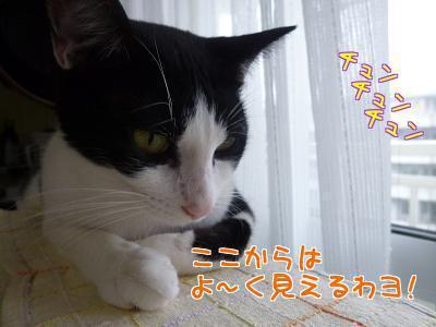 P1210313編集②.jpg