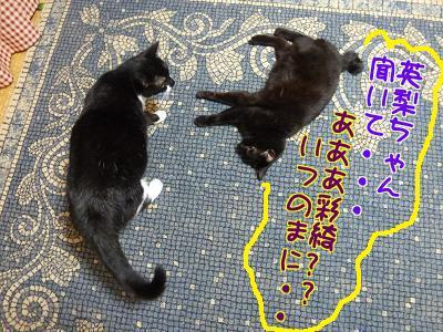 P1210643編集②.jpg